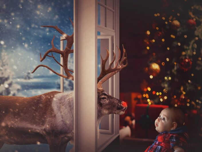 Christmas photography in Dunton Green, Kent